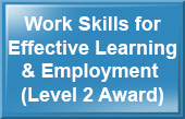 WorkSkills for Effective Learning and Employment (Level 2 Award) - Health and Social Care e-learning training course